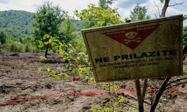 El primer año sin víctimas de minas en Croacia